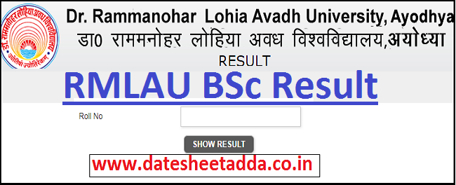 Avadh University BSc Result 2020